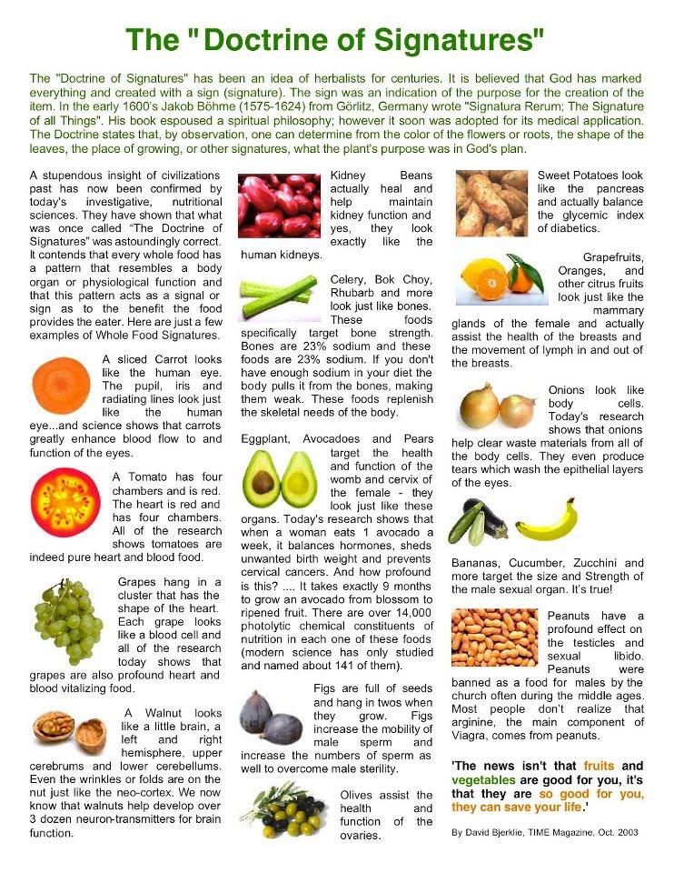 Healthy Food Dartmouth