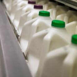 recycled-milk-jug-crafts-11