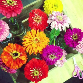 Instagram Flower